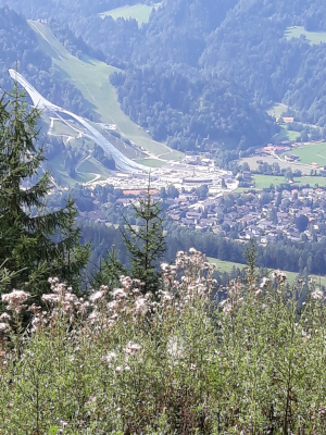 Bergwiese Wank